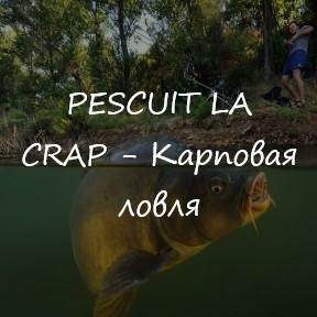 PESCUIT LA CRAP (Карповая ловля)