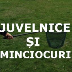 JUVELNICE ȘI MINCIOCURI (Садки, Подсаки)